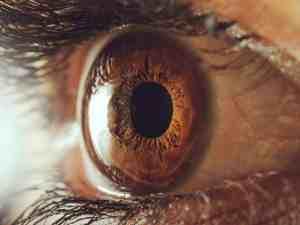 المستقبلات الحسية في العين