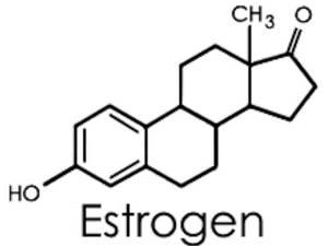 الهرمونات التي تنظم عمل الجهاز التناسلي عند الإناث