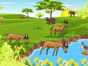 فسر لماذا ينتج عن تنوع النظام البيئي تنوع الانواع في غلاف حيوي صحي