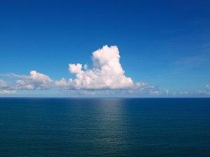 حل تدريبات درس نظافة البحار والمحيطات