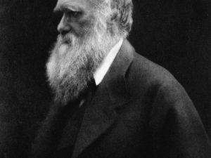 من هو داروين ويكيبيديا
