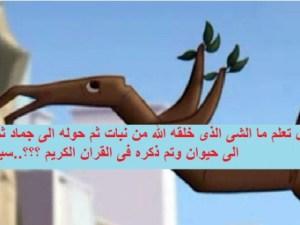 ماهو الشي الذي خلقه الله تعالى نبات ثم حوله جماد ثم حوله حيوان