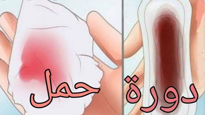 انغراس البويضة الفرق بين دم الدورة ودم الحمل بالصور