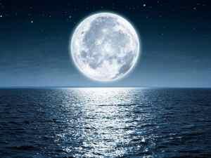 يبدأ الشهر الهجري عند ظهور القمر من