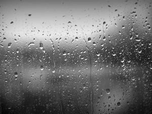 خواطر وكلمات عن المطر لمشاركتها مع الأصدقاء