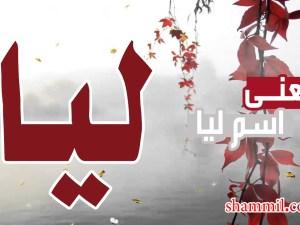 معنى اسم ليا وصفاته وحكمه في الاسلام