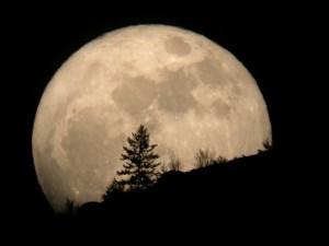 عبارات عن القمر
