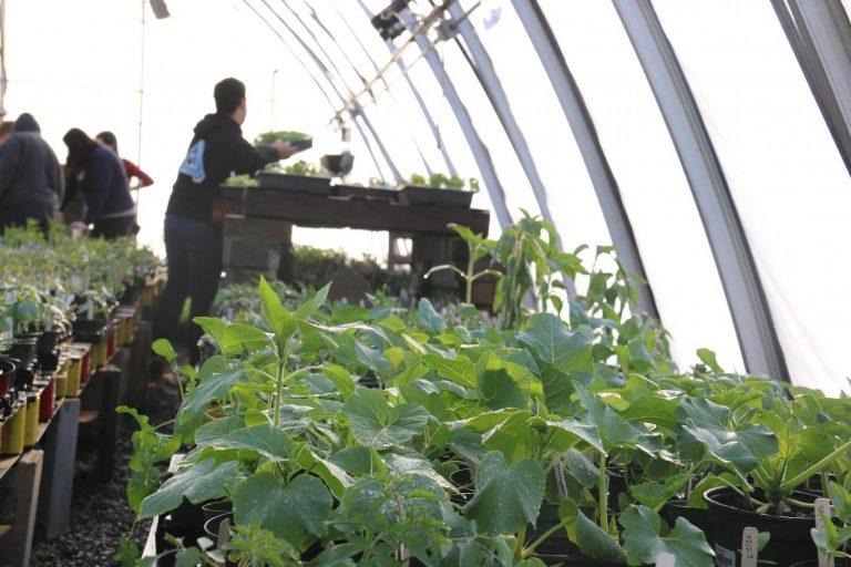 Classroom Insider: Horticulture
