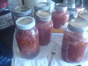 P1020303 canned tomatoes