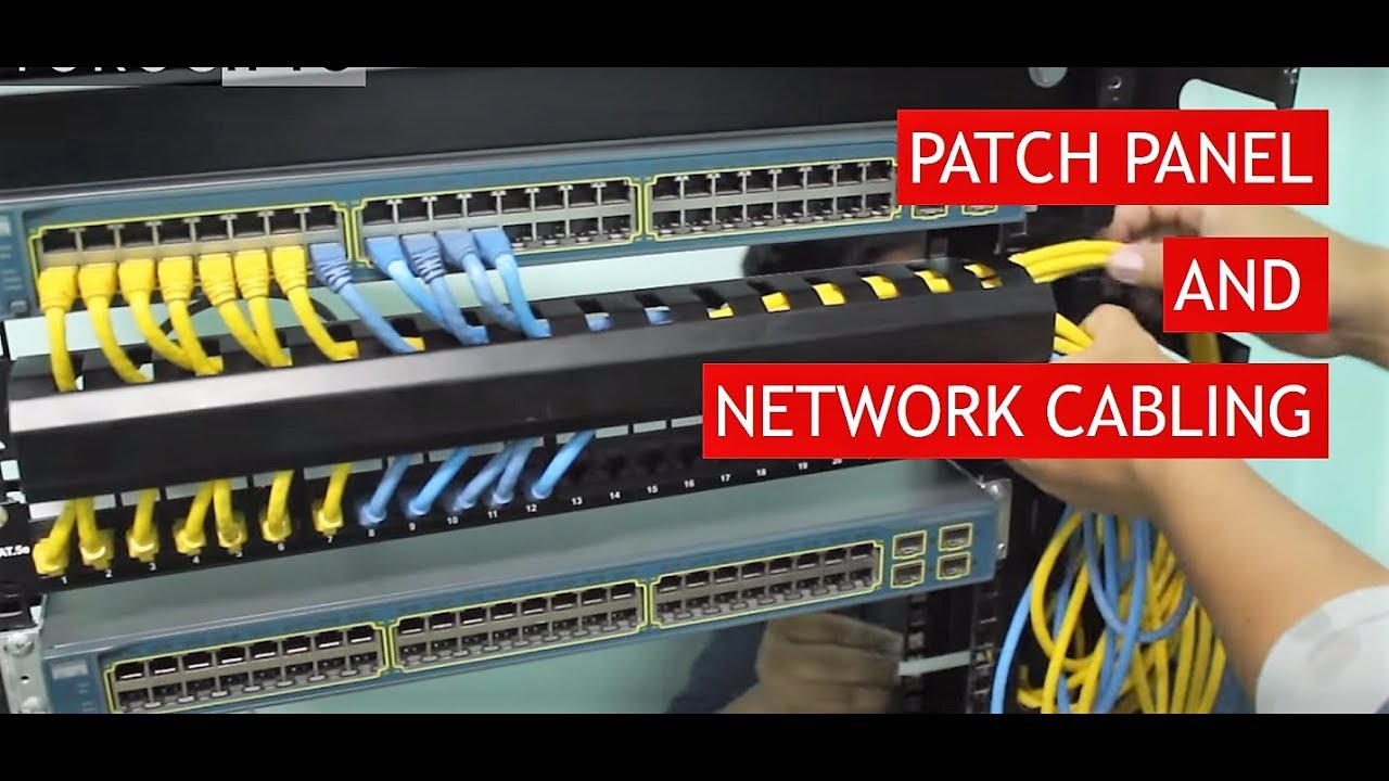 Patch Panel To Switch Connection Guide