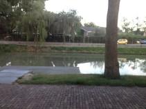 the moat outside my window