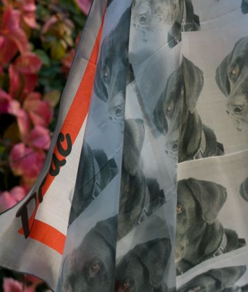 Foulard chien labrador noir détail