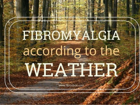 https://whyfibromyalgia.blogspot.com/2019/02/weather-conditions-fibromyalgia.html
