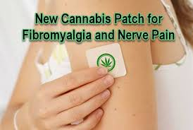 New cannabis patch for fibromyalgia pain and diabetic nerve pain treatment