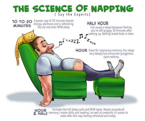 science-of-napping1-598x501