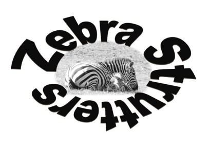Zebra Strutters Rare Disease Advocacy Logo