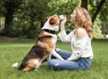 Los perros reducen el dolor de la fibromialgia