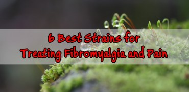 Best Strains for Treating Fibromyalgia and Pain