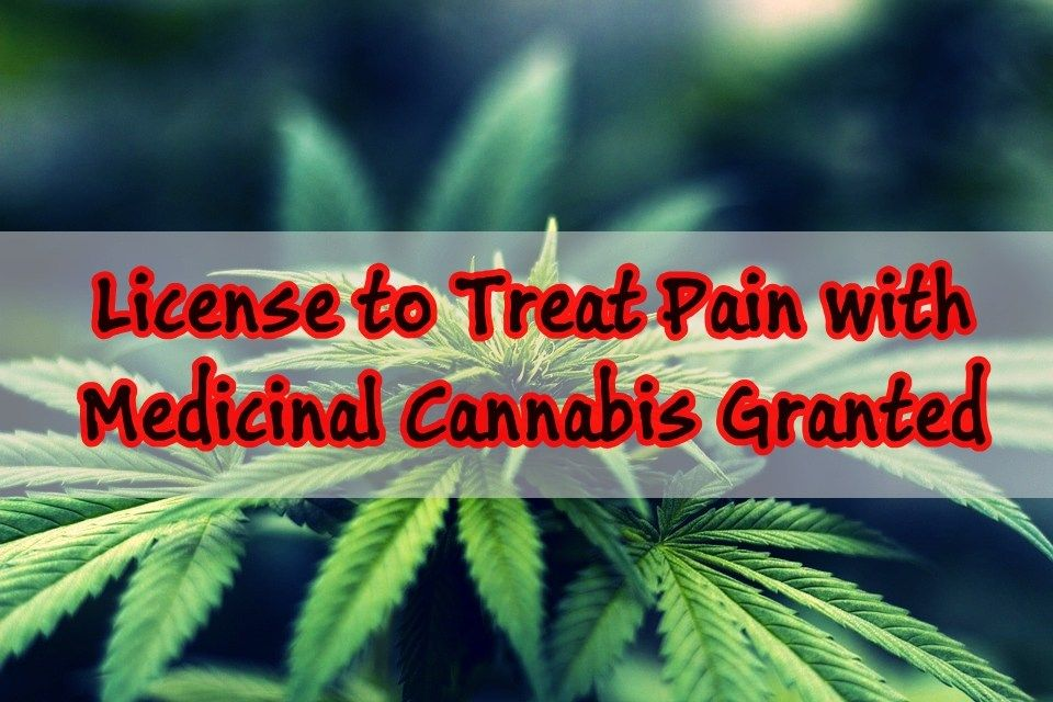 First Licence Granted to Treat Pain with Medicinal Cannabis