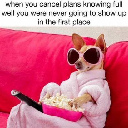 Image result for cancel plans meme
