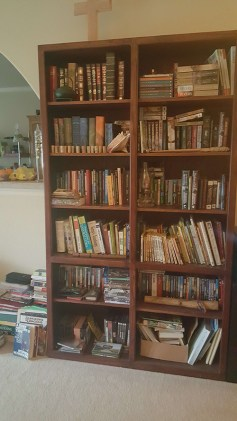 Ah yes, our downstairs bookshelf, packed literally to overflowing.