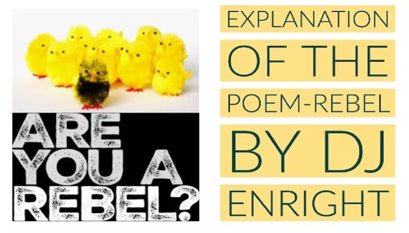 The Rebel by DJ Enright Explanation