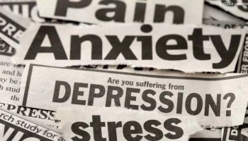 Reduce Stress, Disbalancing Of Brain: Focus On To Reduce Stress