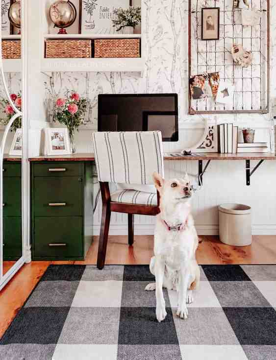 diy office desk in farmhouse syle home office with carolina dog sitting in front on a buffalo check rug
