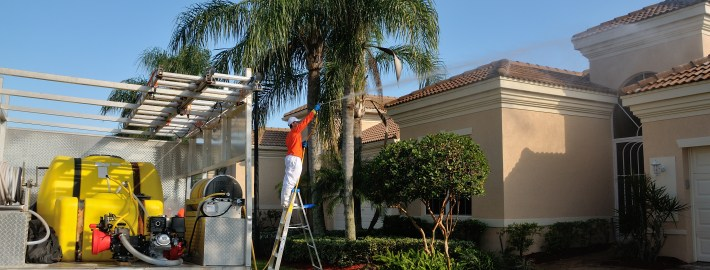 South Florida Roofs: Keeping Them Clean During the Summer