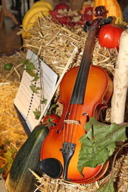5710735 - violin and vegetables as thanksgiving day decoration