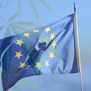 EU Hemp THC Limit Increase