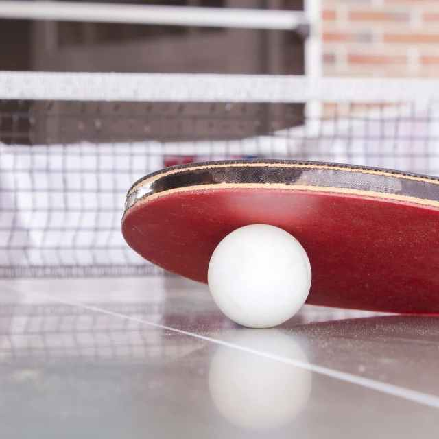 Top 10 Best Ping Pong Paddles Reviews 2019 (Ultimate Guide Right Here)