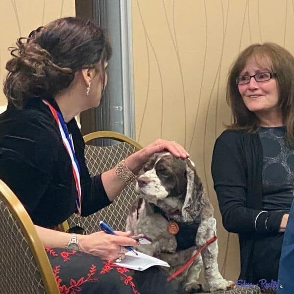 pet blogger with anne serling