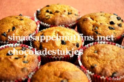 96 Sinaasappelmuffins met chocoladestukjes - met tekst