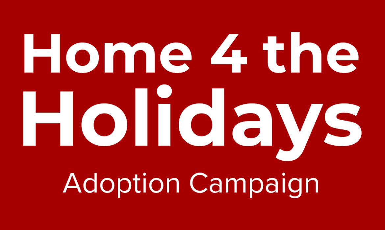 Home 4 the Holidays Adoption Campaign