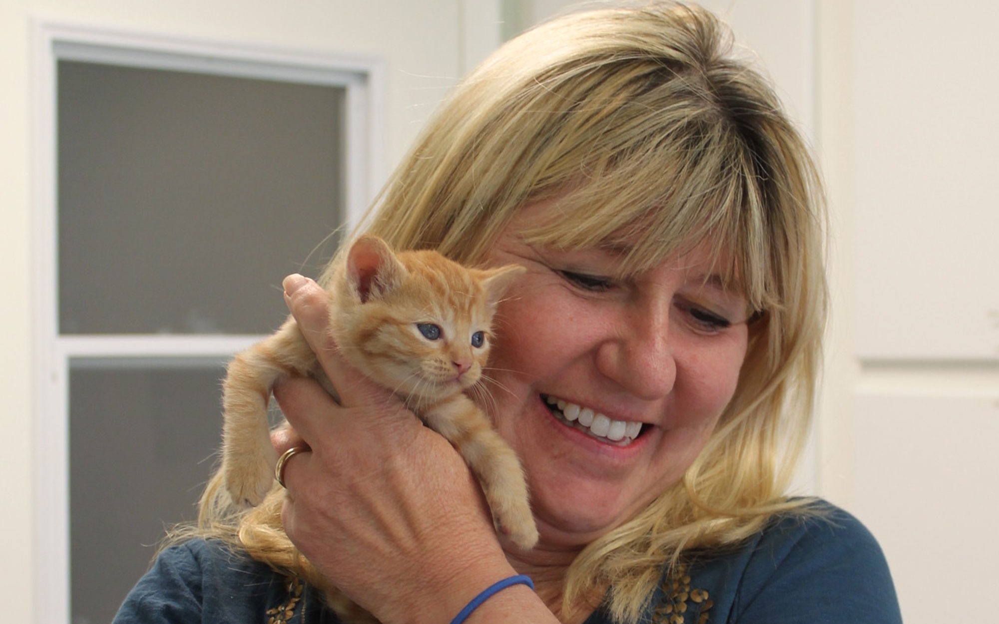 FieldHaven executive director Joy Smith holding an orange tabby kitten