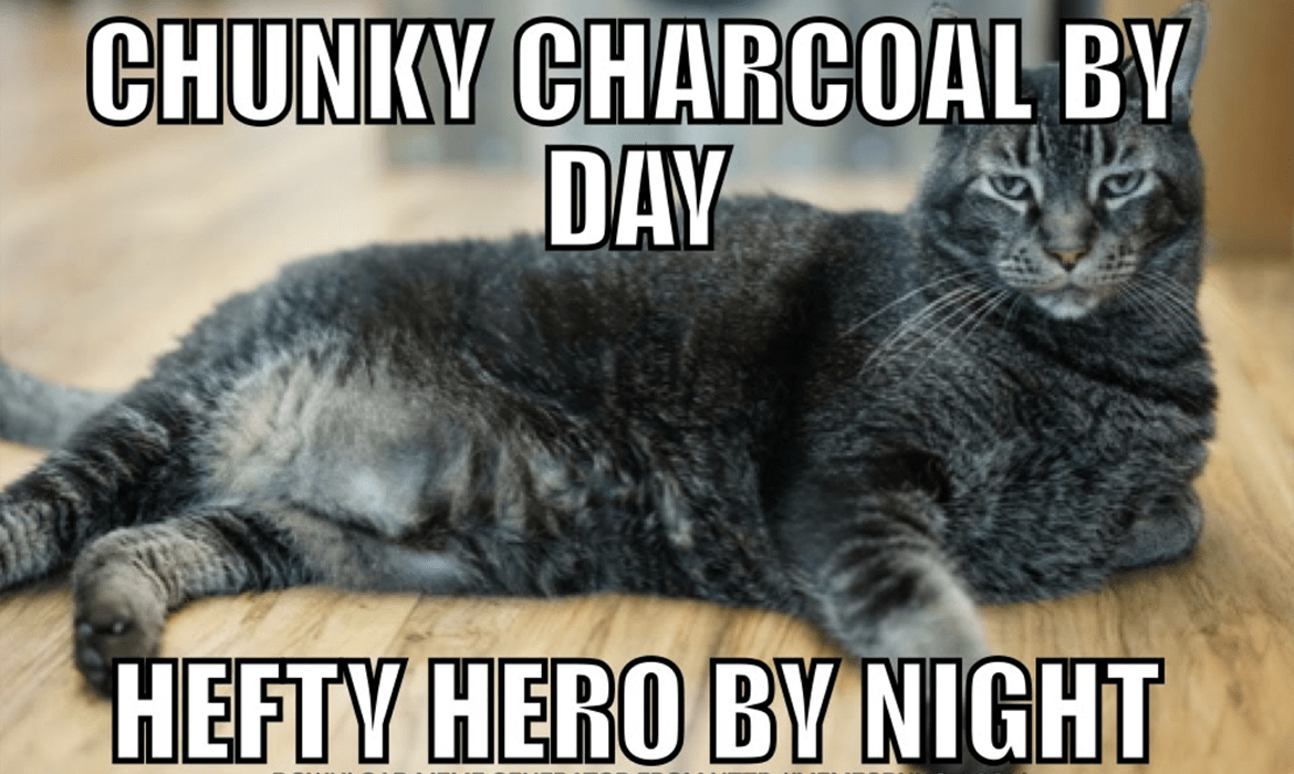 Chunky Charcoal Wants to Be Your Watch Cat