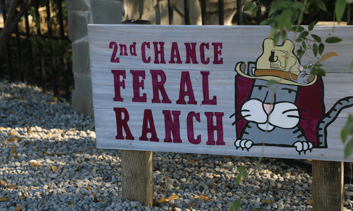 2nd Chance Ranch is Open!