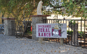 2nd-chance-ranch-tour-img-1_800x500