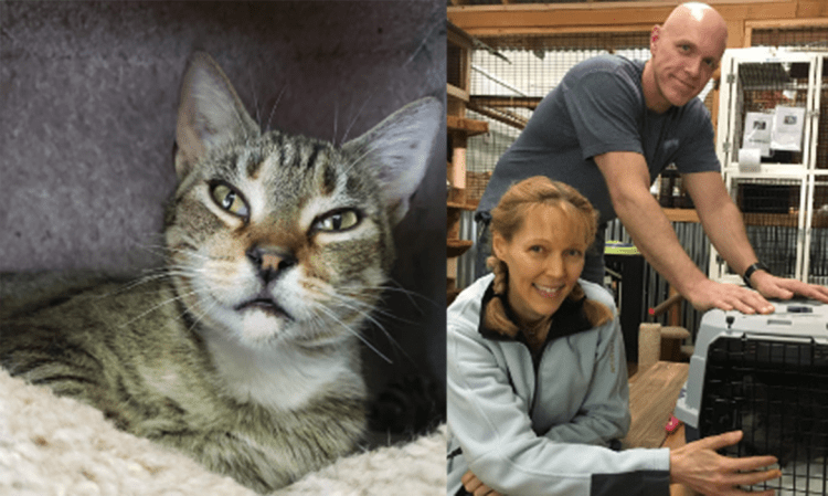 Sweet Clara Helps Her New Family Heal