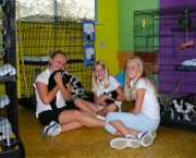 A group of young volunteers spending time with kittens.