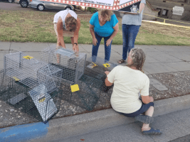 Volunteers in Yuba County with cat cages