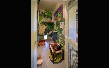 shelter-tour-12-guest-2_800x500