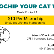 Microchip Your Cat Week