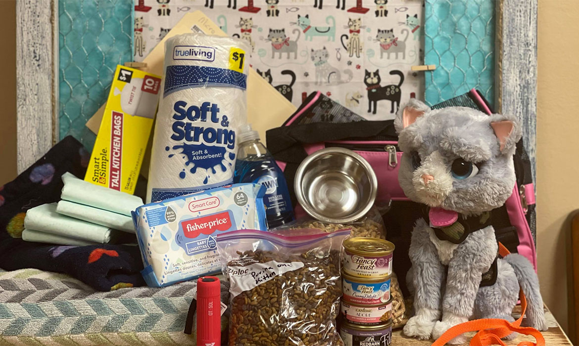 What's in Your Pet's Emergency Kit?