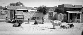 A village street scene in Rajasthan