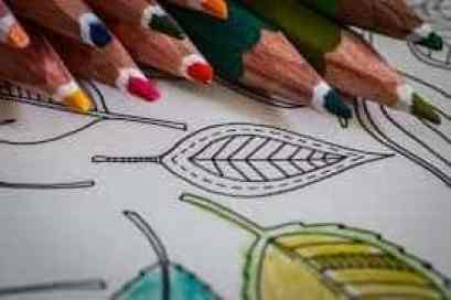 Fall Coloring Pages for All Ages