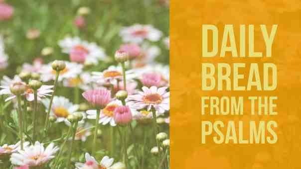 praying psalm 19