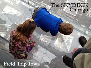 The-Skydeck-Chicago-street - 2 worst things about visiting Chicago