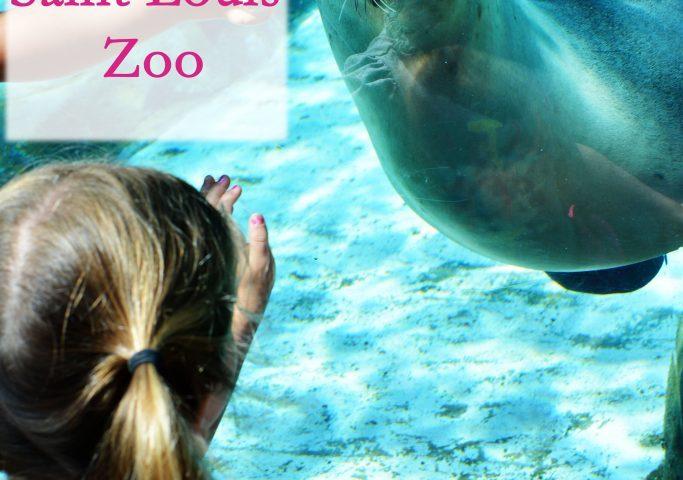 the Saint Louis Zoo